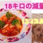 【ダイエットレシピ】チキントマト煮★旦那さんが4ヶ月で18kgの減量に成功♡