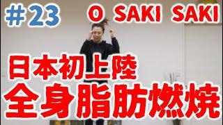 簡単 全身 ダイエット ハンドクラップ 10キロ痩せるダンス より効果絶大!アラフォーがO SAKI SAKI Full 2週間で10キロ痩せるダンスに負けない