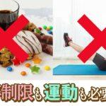 ダイエット 方法 食事制限 モデル愛用 肥満 メタボ 解消 【重ね発酵ハーブ茶】