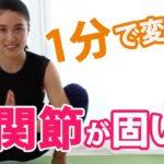 【股関節が固い】お家で1人で骨盤矯正〔体を柔らかくする方法NO.4〕How to become super flexible#153
