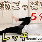 #8【ヨガ】たった5分で老廃物ごっそり!手軽にできる簡単ヨガストレッチ【ダイエット】