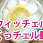 「スウィッチェル」しょうがのホームメイドドリンク、ダイエットレシピ【ヤセタガールTV #3】