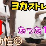 【ヨガ風ストレッチ】即効性◎柔軟性爆UP!身体が硬い人必見です!【体力テスト】【長座体前屈】