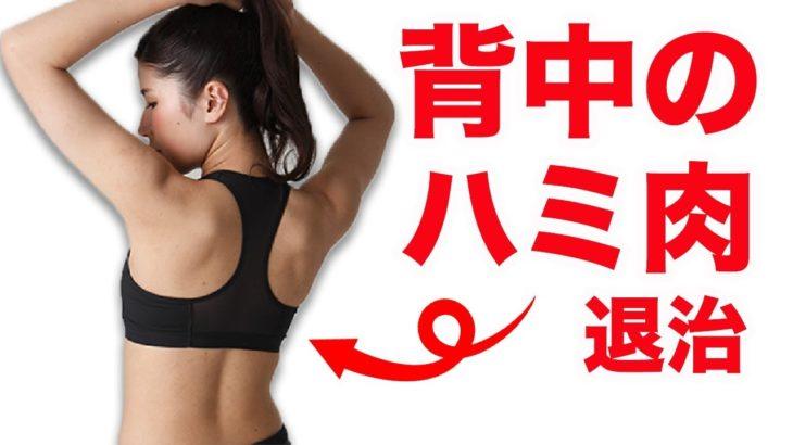 背中のハミ肉ダイエット!モデルのような後ろ姿を手に入れるトレーニング