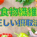【ダイエット】食物繊維は摂取すべきか?正しい摂取方法や種類を紹介〜簡単に研究論文解説シリーズ〜