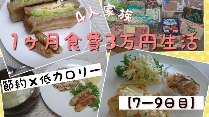 【一か月食費3万円チャレンジ】節約×低カロリー【鶏むねピカタ・もやしの中華丼】